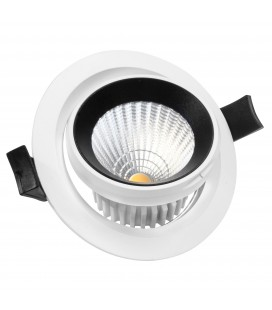Encastrable Orientable LED IP54 - 10W - DeliTech®