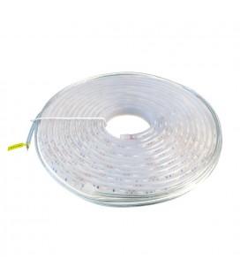 5 mètre de Ruban LED Bleu - 12V - 14,4W/m - 60 LEDs/m - IP68 - SMD5050