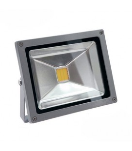 Projecteur LED Ecolife 12/24V DC - 20W - COB Bridgelux