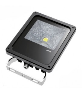 Projecteur LED Proline 240V - 20W - COB Bridgelux