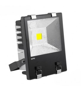 Projecteur LED Proline Meanwell - 100W - COB Bridgelux
