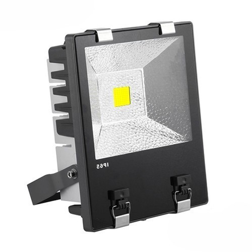 Projecteur led proline meanwell 100w cob bridgelux deliled - Projecteur led 100w ...