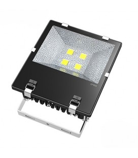 Projecteur LED Proline Meanwell - 200W - COB Bridgelux