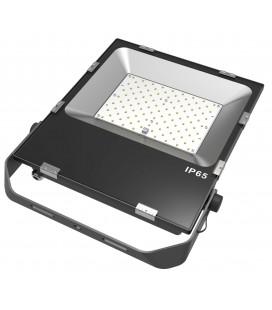 Projecteur LED Proline Extra-Plat 240V - 100W