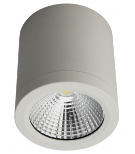 Applique murale / Spot de plafond architecte LED saillie rond - 10W - COB - Ecolife Lighting