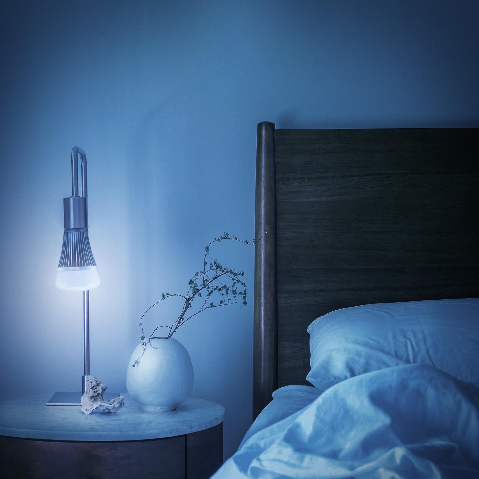Kit ampoule LED connectée Maestro™