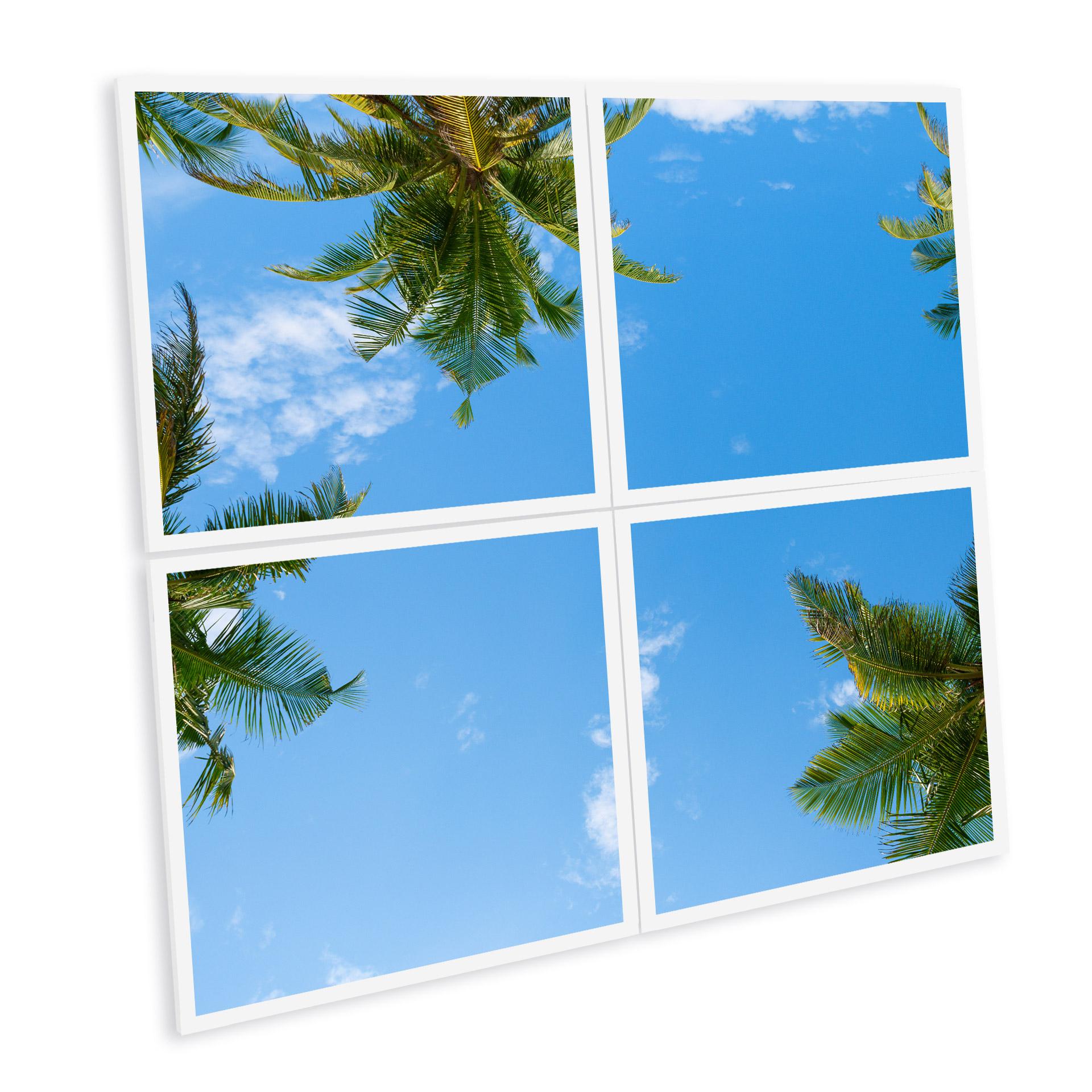 panneau led imprimé et personnalisé ciel palmier