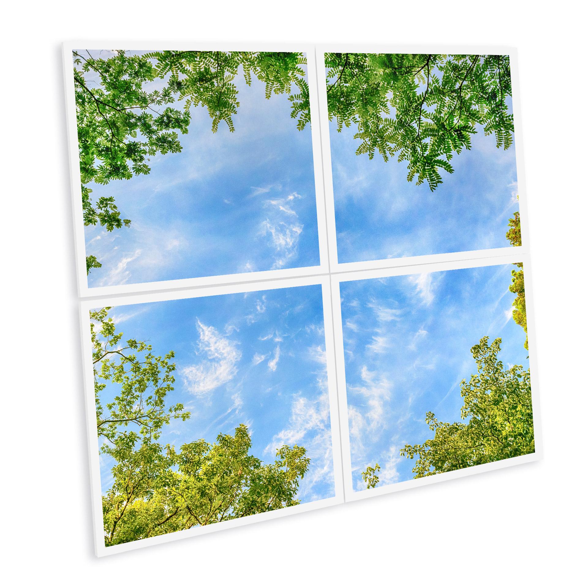 pavé led imprimé et personnalisable ciel arbre