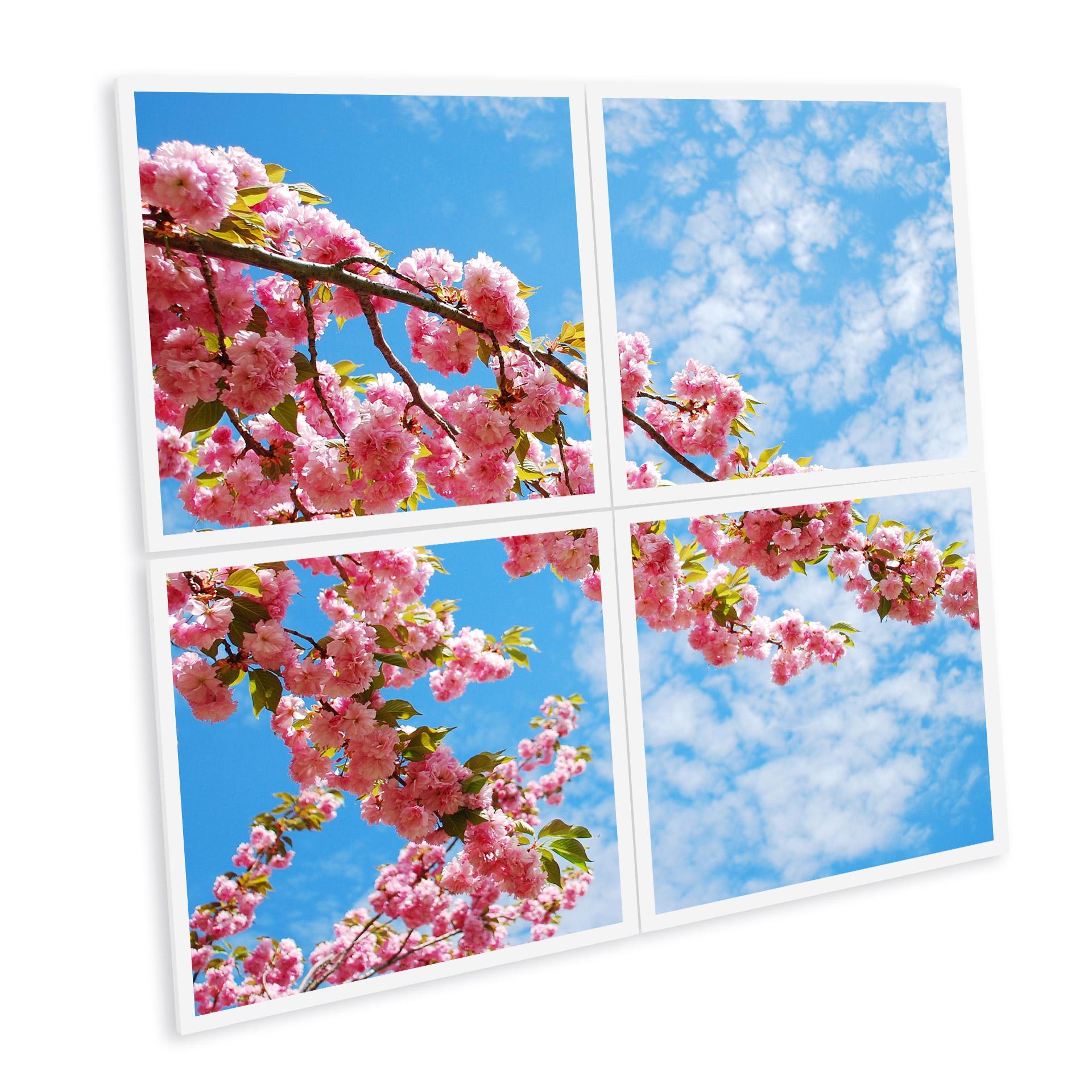 pavé led imprimé ciel cerisiers japon fleur floraison