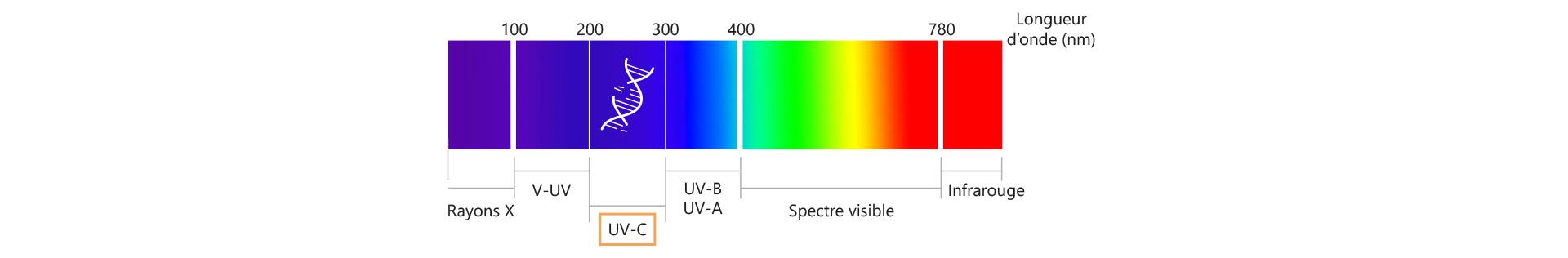 Longueur d'onde des rayons UV-C