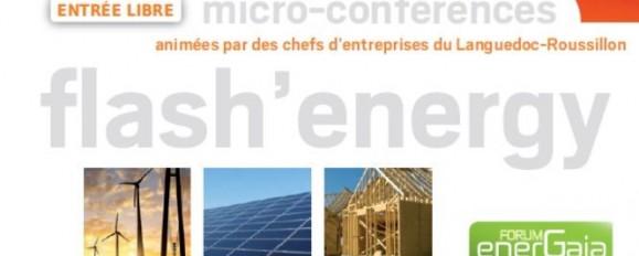 DELILED en micro-conférence au Forum EnerGaïa 2016