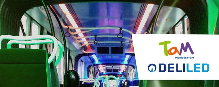 [Retour en images] DELILED éclaire le tramway de Montpellier pour la fête de la musique 2017 !